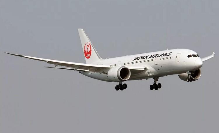 Japan Airlines самолет